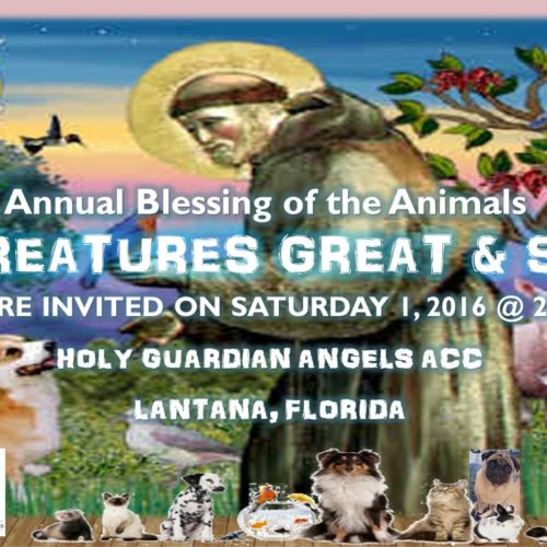 2016-blessing-of-the-animales-jpeg